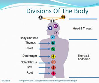 13 point chakra system